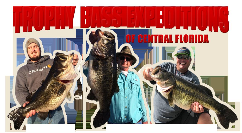 Rodman Bass Guide